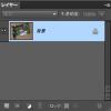 Photoshop Elementsで別名保存時に「複製を保存」オプションが出てしまうのは?
